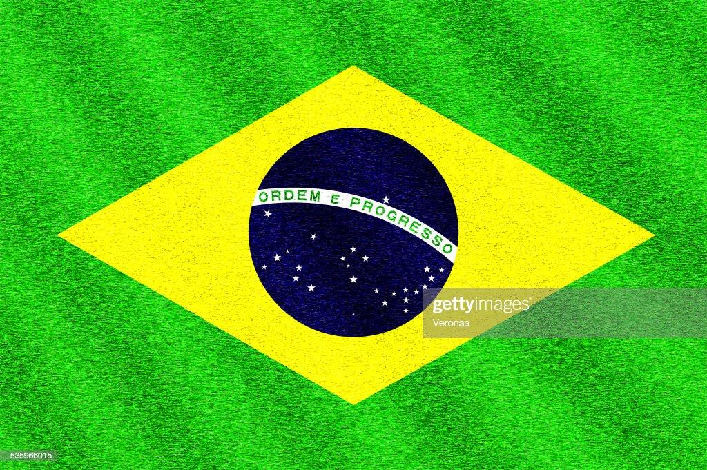 Flag of the Brazil : Stock Illustration