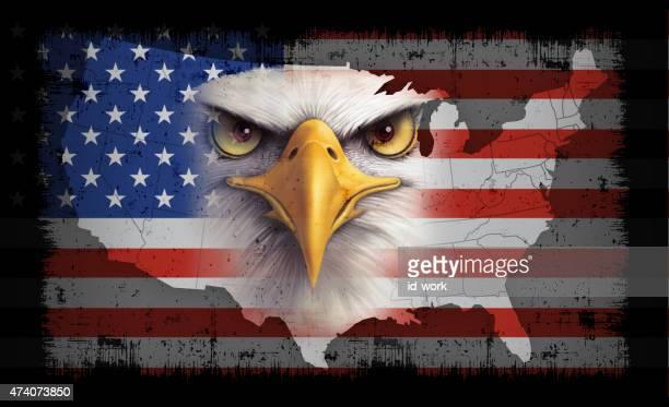 usa flag with bald eagle - bald eagle stock illustrations