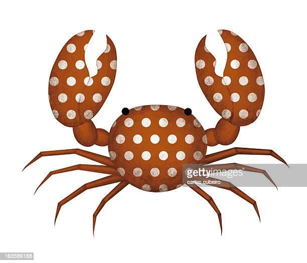 Flamenco Crab