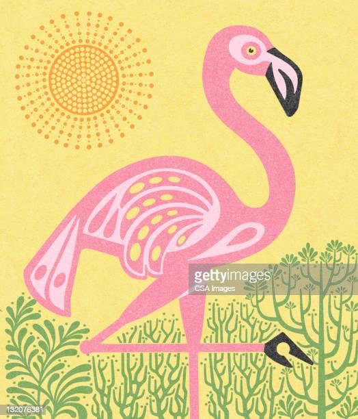 flamingo with sun - flamingo stock illustrations, clip art, cartoons, & icons