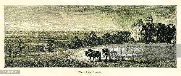 Flats of the Genesee River, USA | Historic American Illustrations