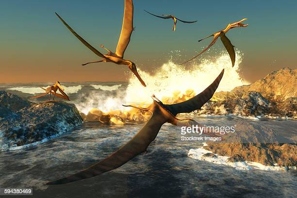 A flock of Anhanguera pterosaurs catch fish off a rocky coast in prehistoric times.