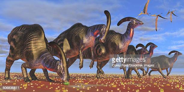 A flock of Pteranodon longiceps fly over a herd of Parasaurolophus dinosaurs as they look for better vegetation to eat.