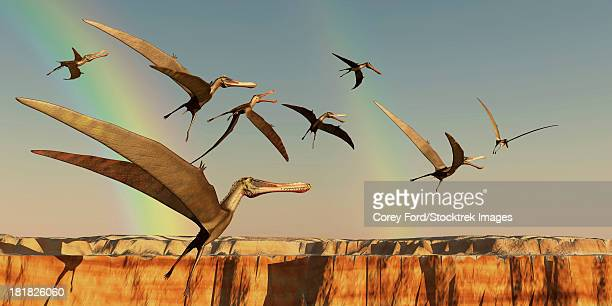 A flock of Pterodactyls fly out of a canyon looking for new prey to eat.