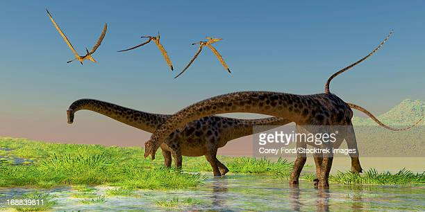 A flock of Pterosaur birds fly over two Diplodocus dinosaurs feeding in a lush marsh.