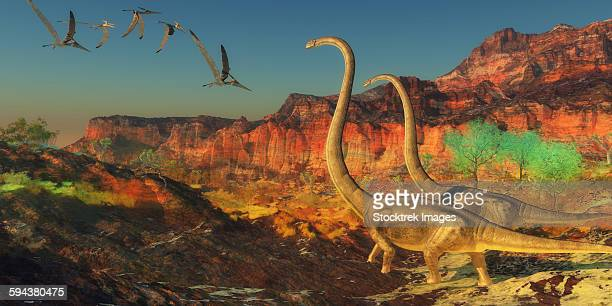 A flock of pterosaurs fly past two Omeisaurus dinosaurs during the Jurassic period.