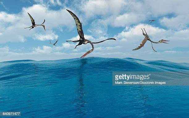 A flock of Quetzalcoatlus fishing.