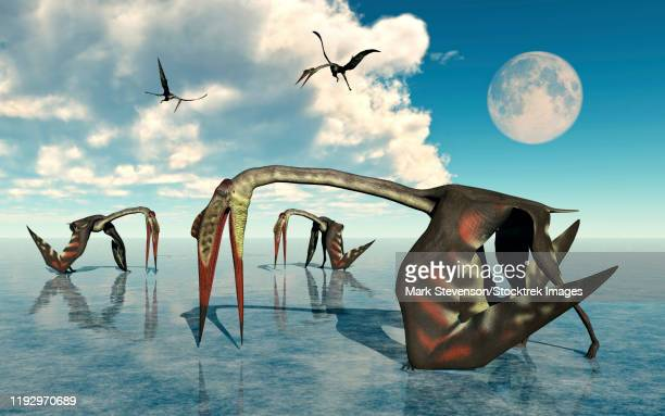 a flock of quetzalcoatlus searching for food. - scavenging stock illustrations