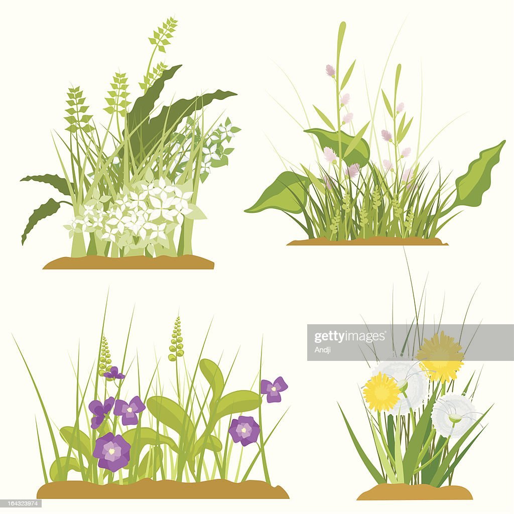 Floral and Grass Design Elements