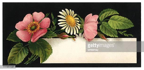 フローラルカード,1876 - 1870~1879年点のイラスト素材/クリップアート素材/マンガ素材/アイコン素材