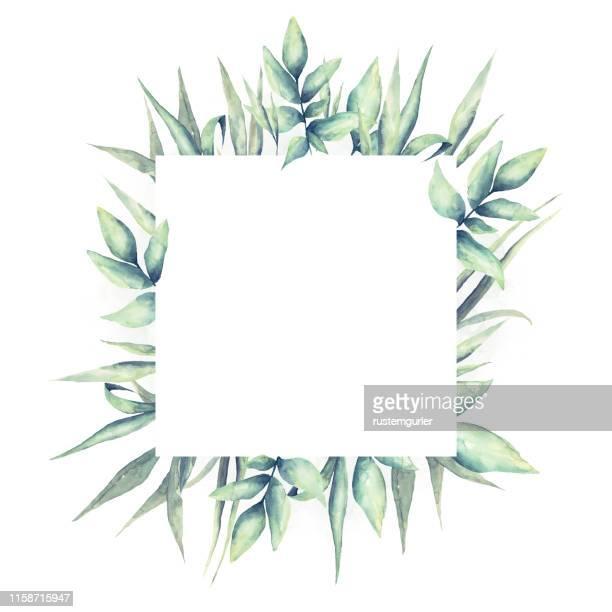 水彩の熱帯の葉と花のフレーム - ユーカリの葉点のイラスト素材/クリップアート素材/マンガ素材/アイコン素材