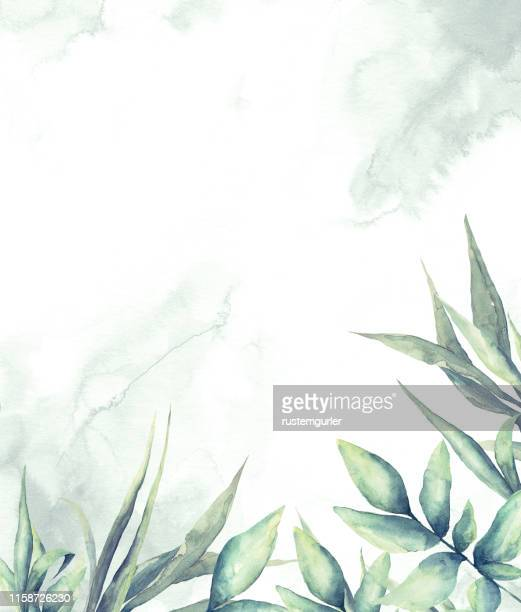illustrazioni stock, clip art, cartoni animati e icone di tendenza di floral frame with watercolor tropical leaves - motivo floreale