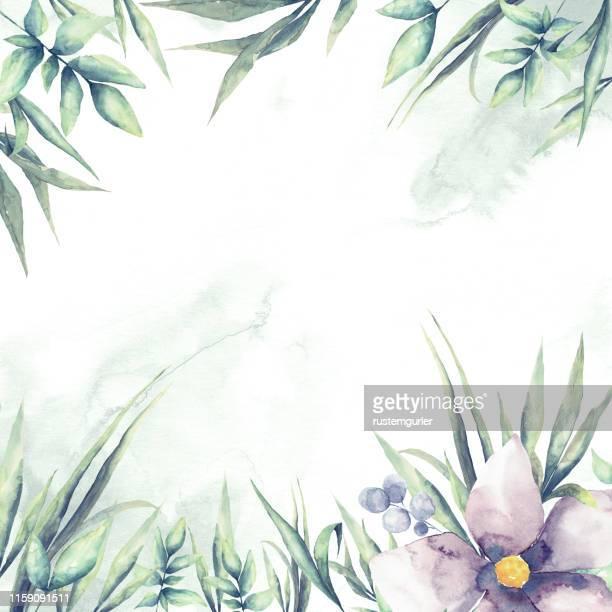 illustrazioni stock, clip art, cartoni animati e icone di tendenza di cornice floreale con foglie tropicali ad acquerello - albero sempreverde