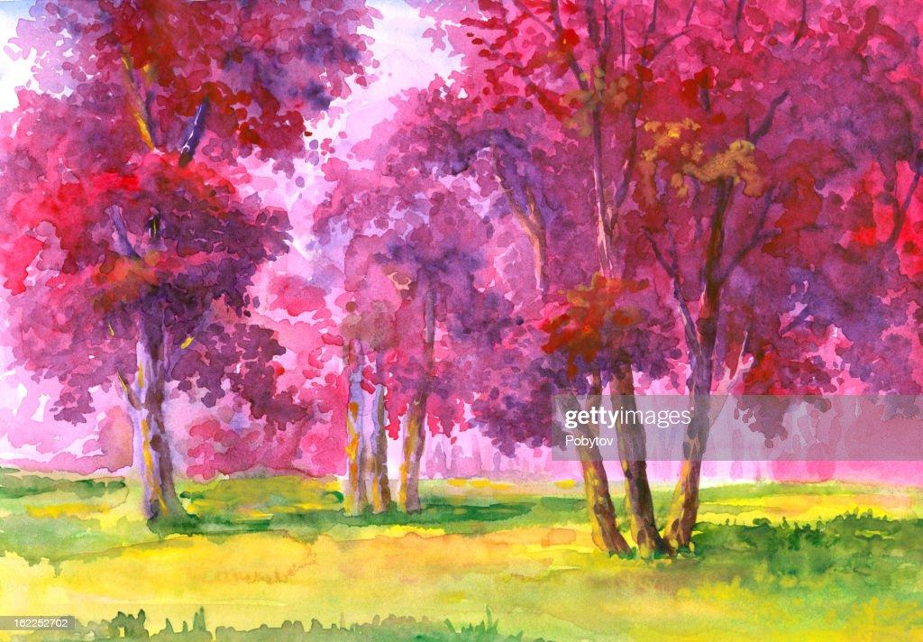 Flowering Trees : stock illustration