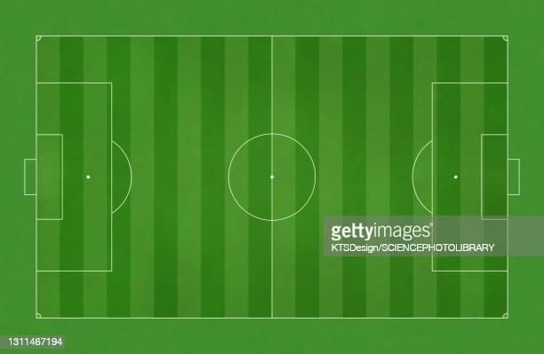football field, illustration - football pitch stock illustrations