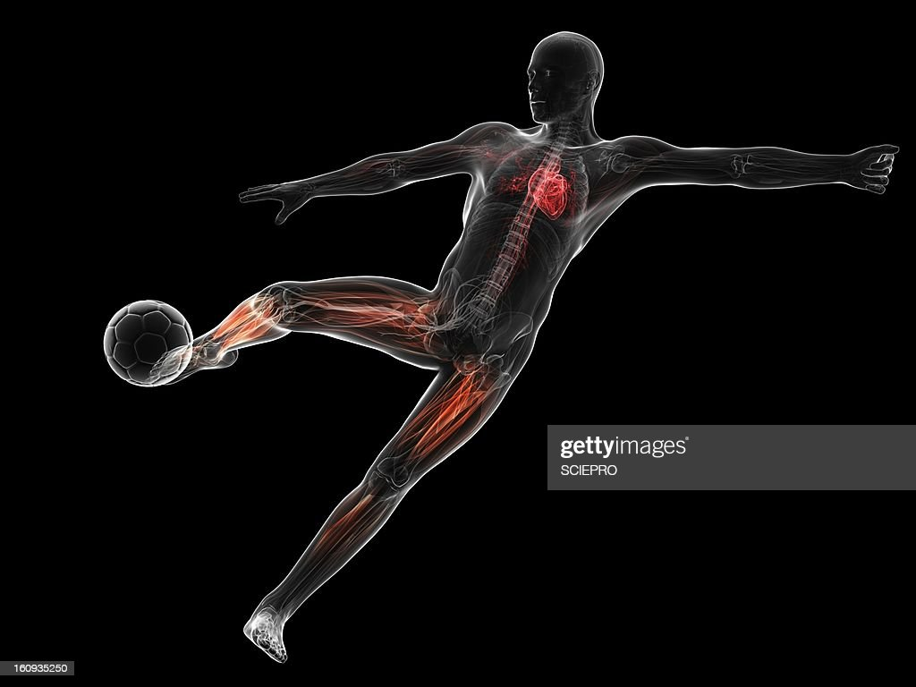 Football player, artwork : Stock Illustration