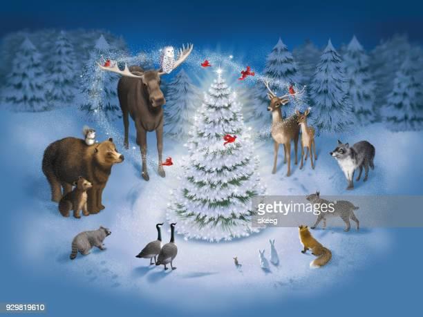 forest christmas - cardinal bird stock illustrations, clip art, cartoons, & icons