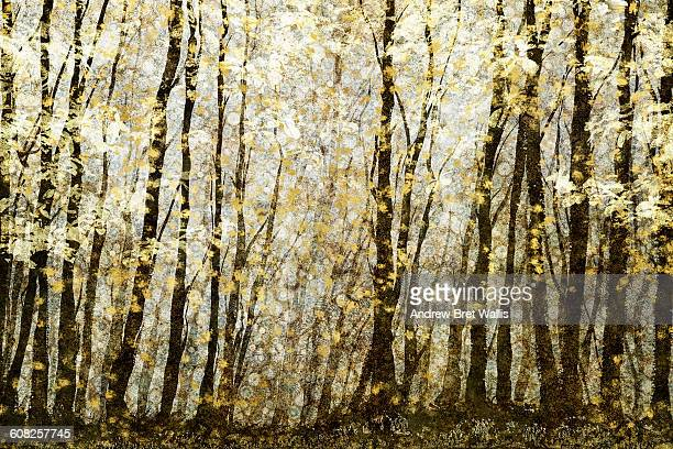 forest filed with golden autumn leaves - digital composite stock illustrations
