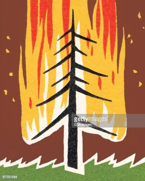 ilustraciones, imágenes clip art, dibujos animados e iconos de stock de forest fire - incendio forestal