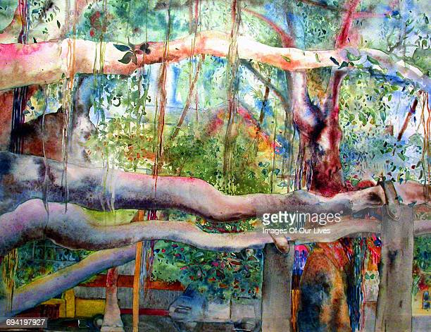 forest watercolor painting - asheville stock illustrations