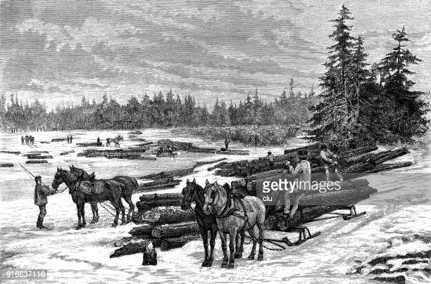 foresters bringing down the logs - 1877 stock illustrations, clip art, cartoons, & icons