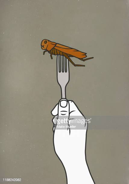 fork piercing cockroach - food and drink stock illustrations