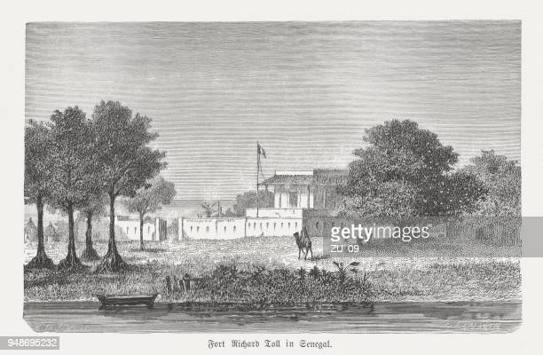fort richard toll in senegal, wood engraving, published in 1868 - senegal stock illustrations, clip art, cartoons, & icons