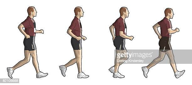 four stages of person race walking - racewalking stock illustrations, clip art, cartoons, & icons