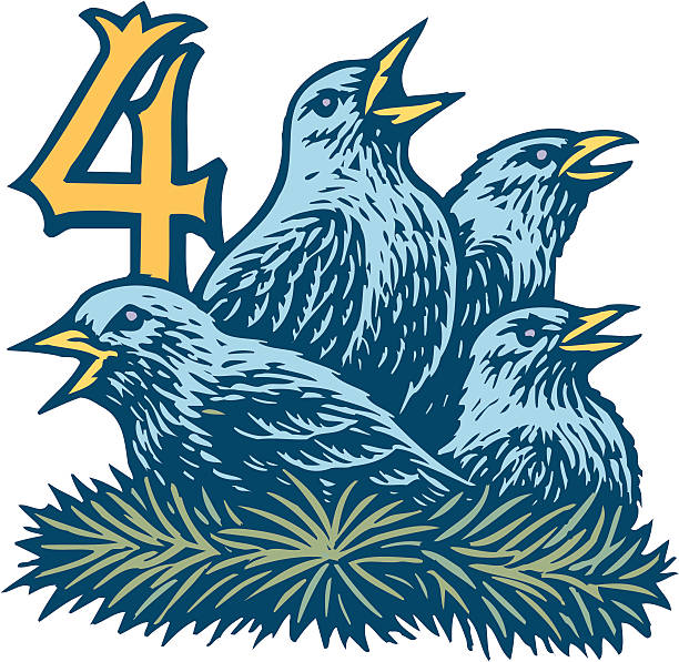 Fourth day of Christmas, 4 calling birds, Color