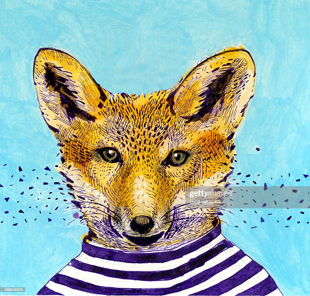 hand drawn illustration of a fox in the striped t-shirt