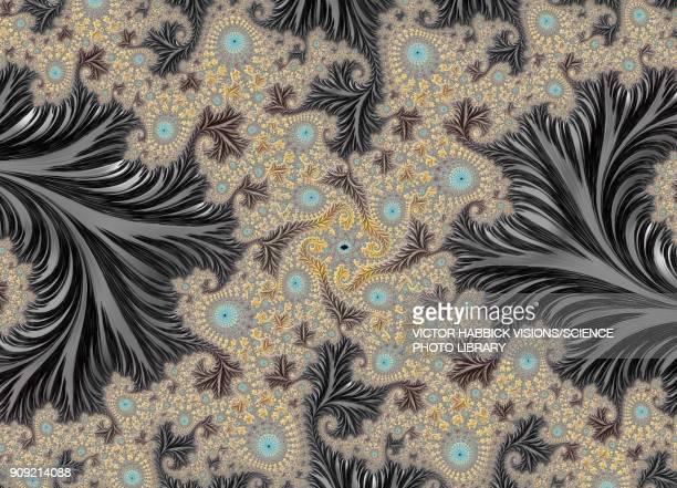 fractal, illustration - natural pattern stock illustrations