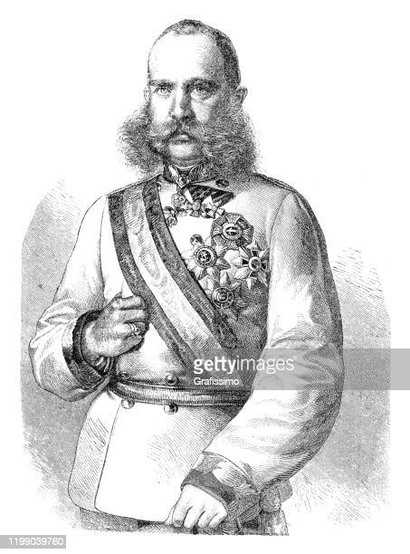 franz joseph i king of hungary portrait - franz joseph i of austria stock illustrations