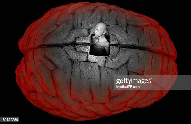 freeing the mind - cerebral hemisphere stock illustrations, clip art, cartoons, & icons