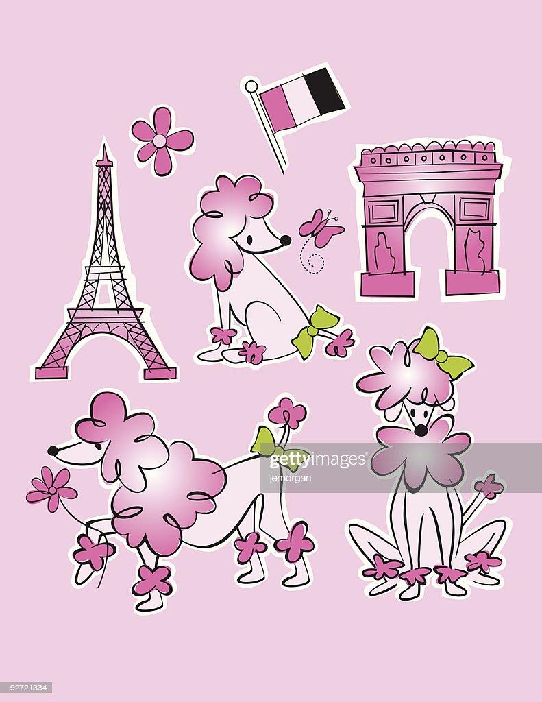 French Poodle Illustration