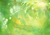 http://www.istockphoto.com/vector/fresh-foliage-spring-watercolor-background-gm520285236-90907911
