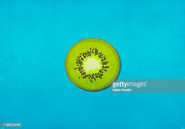 ilustrações de stock, clip art, desenhos animados e ícones de fresh green kiwi slice on blue background - fruta kiwi