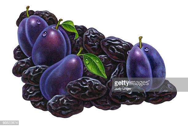 Fresh Prunes & Plums