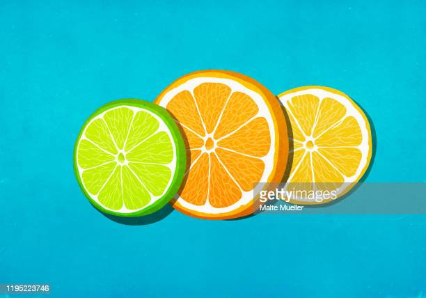 fresh, vibrant lime, orange and lemon slices on blue background - food and drink stock illustrations