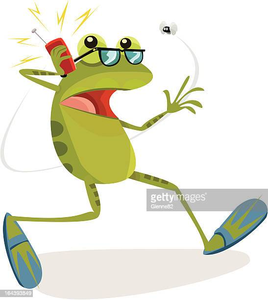 Frog on a Mobile Phone