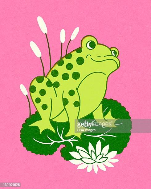 カエルに座るリリーパッド - 小型のカエル点のイラスト素材/クリップアート素材/マンガ素材/アイコン素材