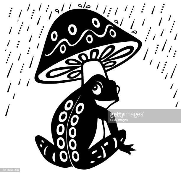 frog under mushroom umbrella - rain stock illustrations