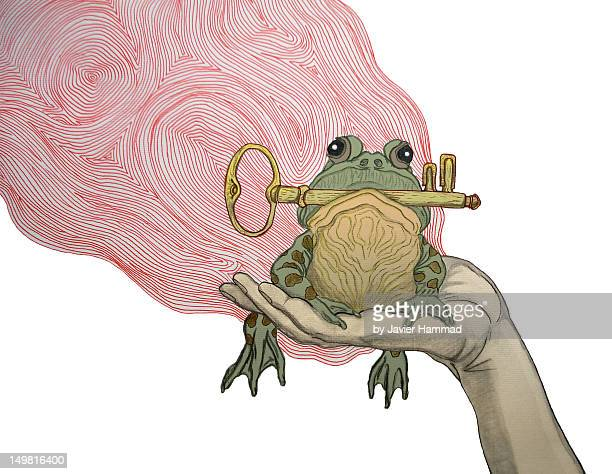 Frog with key