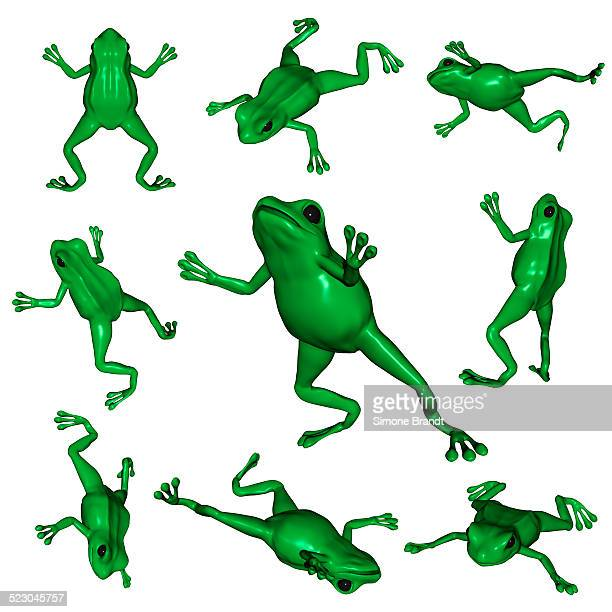 frogs viewed from different angles, 3d illustration - medium group of objects stock illustrations, clip art, cartoons, & icons