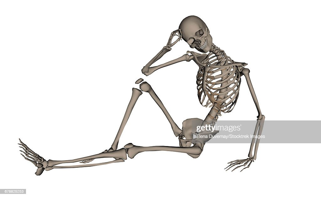 Front View Of A Human Skeleton Posing Isolated On White