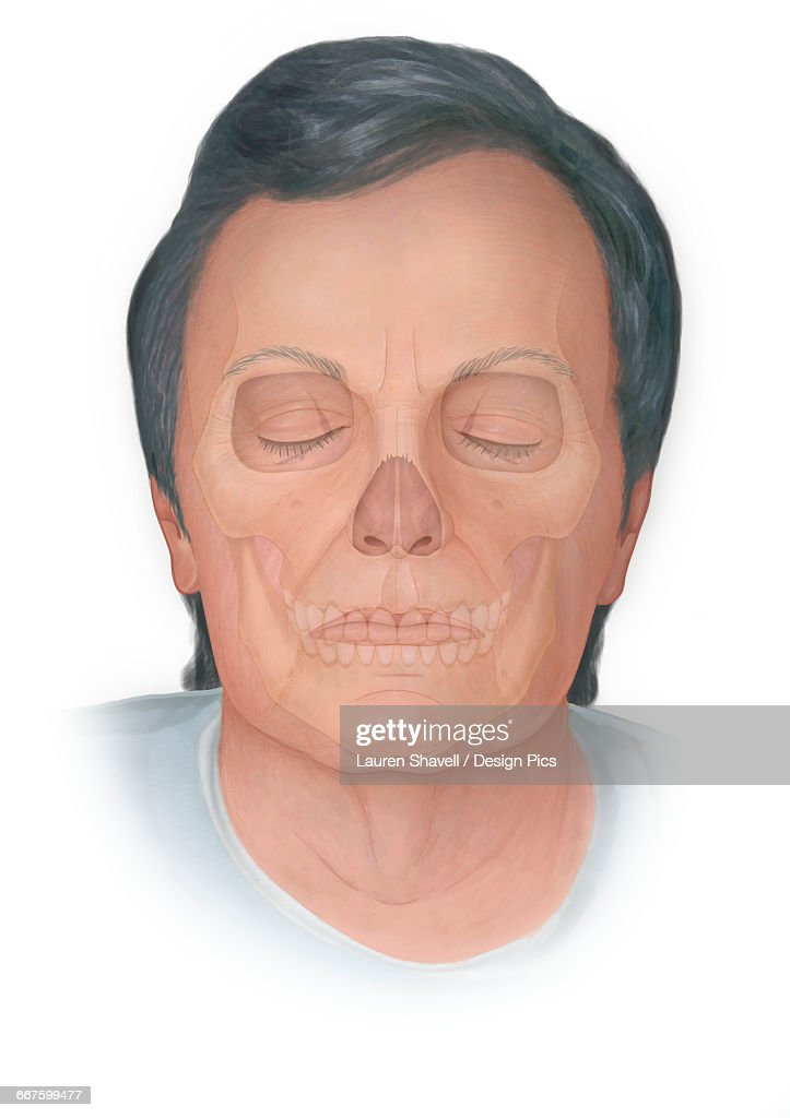 front view of normal elderly face with a skull phantomed behind