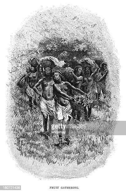 Frutas de encuentro en el norte de África (Victorian ilustración)