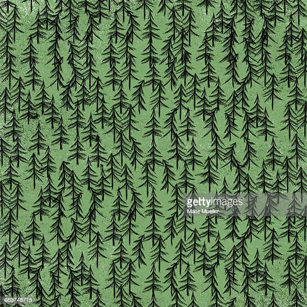 full frame shot of trees in forest - tree trunk stock illustrations, clip art, cartoons, & icons