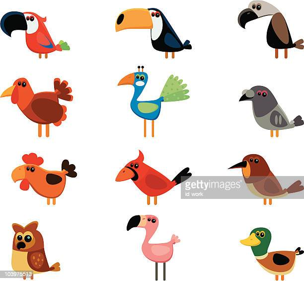 funny birds - flamingo stock illustrations, clip art, cartoons, & icons