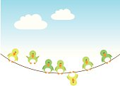 funny birds on an electric wire