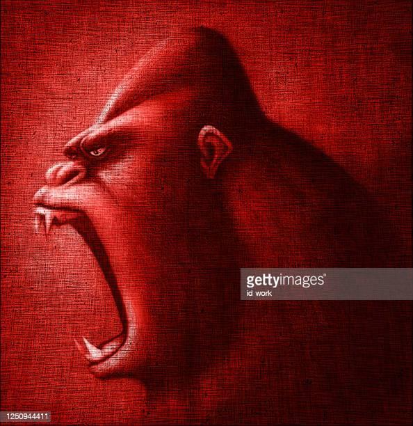 furious gorilla head - chimpanzee teeth stock illustrations